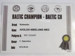 BALTIC CH ROTTWEILER