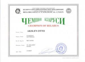 CH BLR Otto-001